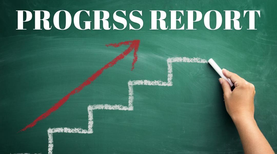DNPF Progress Report